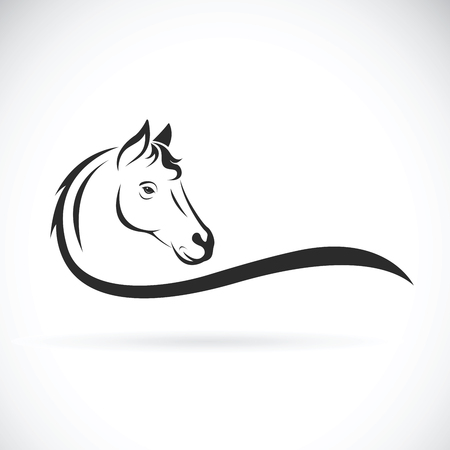 Vector of a horse head on white background. Wild Animal