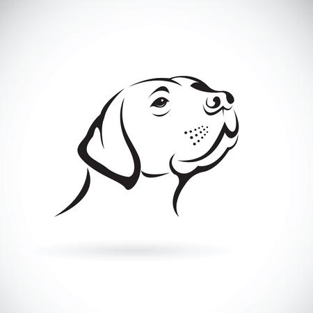 白い背景に、ペットボトル動物に犬頭 (ラブラドール ・ レトリバー) のベクトル。