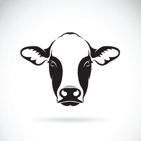 흰색 배경에 암소 얼굴 디자인의 벡터입니다. 농장 동물.