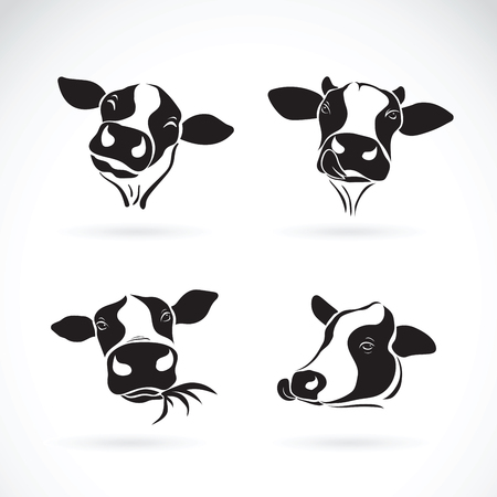 Vector group of a cow head design on white background. Farm Animal. Vettoriali