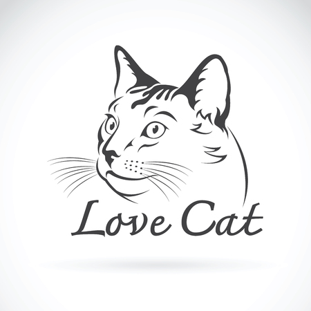 Vector of cute cat on white background. Pet, animal.