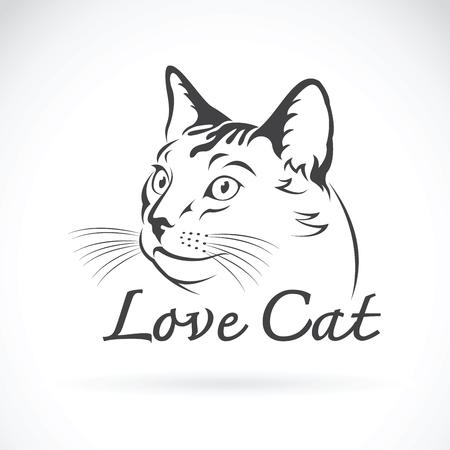 Vector van schattige kat op witte achtergrond. Huisdier.