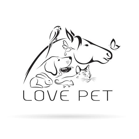 ペットの馬、犬、猫、鳥、蝶、カメレオン、白い背景で隔離のウサギのベクトル グループ。ペット アイコン。  イラスト・ベクター素材