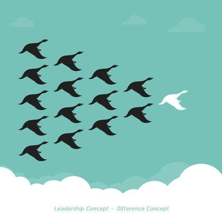 Flock of a duck flying in the sky.,  Leadership Concept and Difference Concept., Wild duck. 일러스트