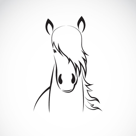 Vector of a horse head design on white background, Horse Logo. Wild Animals. Vector illustration. Icon. Illustration