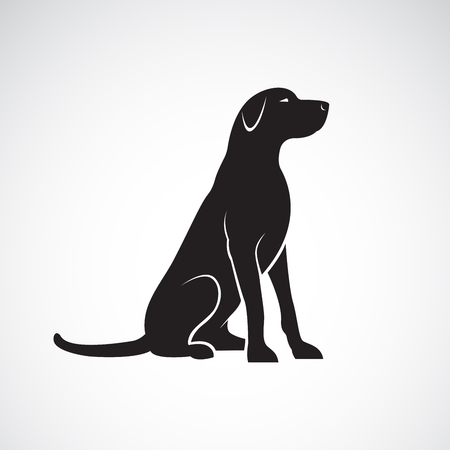 Vector of a labrador retriever dog isolated on a white background. Pet. Animal.