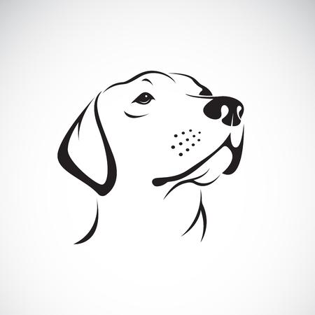 Vector de una cabeza de perro (Labrador Retriever) sobre fondo blanco