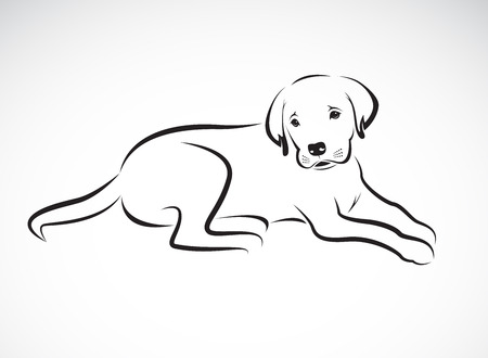 Vector of a dog labrador on white background. Pet. Animal. Easy editable layered vector illustration.