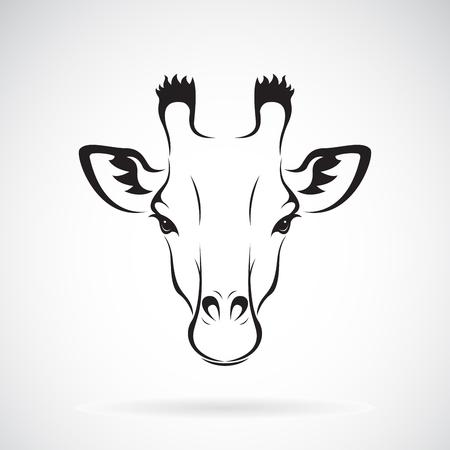 Giraffe head icon. Illustration
