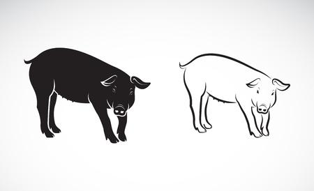 Pigs icon.