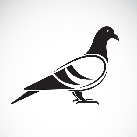 Vector of a pigeon design on white background. Bird. Animals. Vector illustration. Stock Illustratie