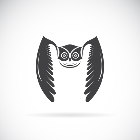 Vector of an owl design on white background.