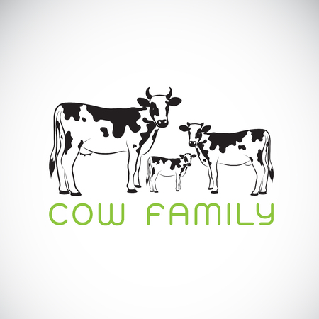 Vector of cows family on white background. Farm. Animal. Easy editable layered vector illustration. Illustration