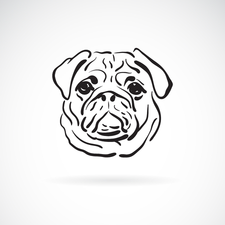 Vector of pug's face