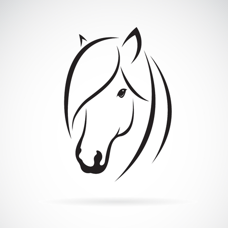 Vector of horse head design on white background.