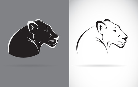 Black Panther in black and white