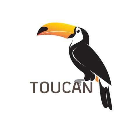Projekt ptaka Tukan Ilustracje wektorowe