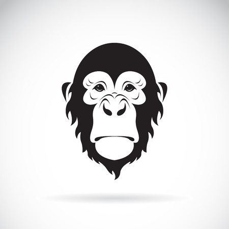 Vector of a monkey face design on white background. Wild Animals. Easy editable layered vector illustration.