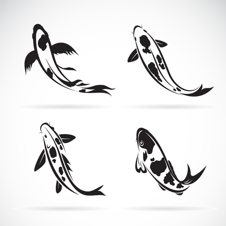 Carp koi fish isolated on white background. Easy editable layered vector illustration. Vectores