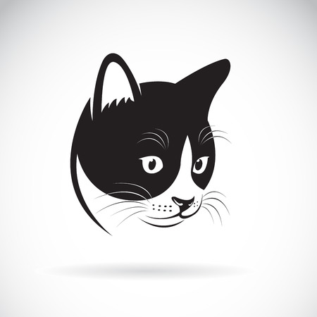 Vector of a cat head design on white background. Illustration