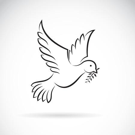 Vettore della colomba nera della pace con rami di ulivo su sfondo bianco. Progettazione di uccelli. Animali. Facile illustrazione vettoriale modificabile a strati.