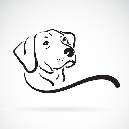 Diseño de cabeza de perro labrador sobre fondo blanco.