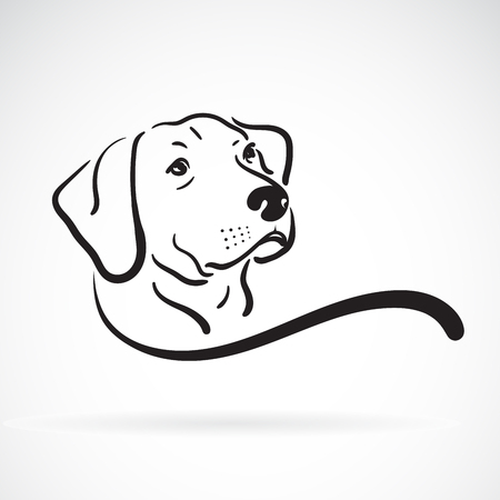 labrador dog head design on white background.