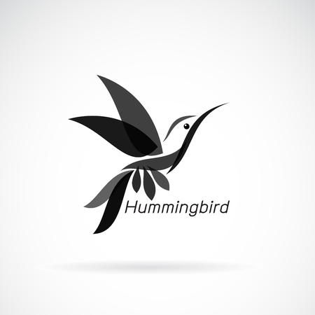 hummingbird design on white background, Wild Animals.