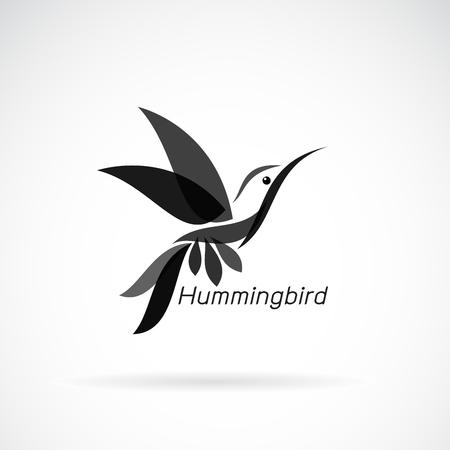 hummingbird design on white background, Wild Animals.