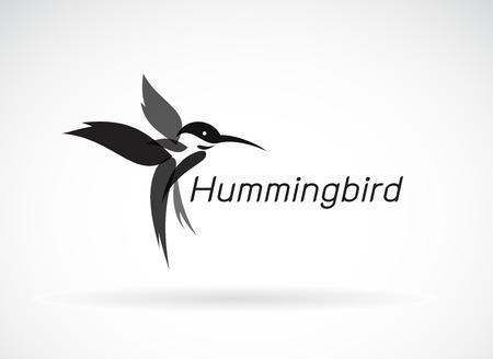 hummingbird design on white background.