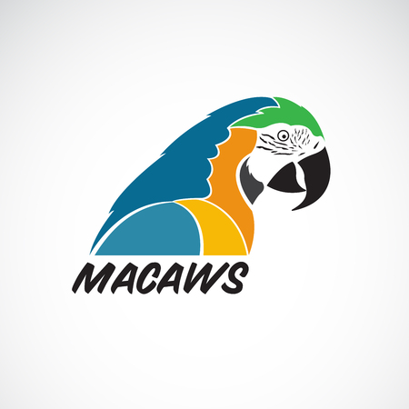 Vector of macaws parrot on white background. Bird Icon. Wild Animals. Easy editable layered vector illustration.  イラスト・ベクター素材
