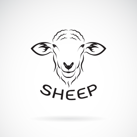 Vector of sheep head design on white background. Wild Animals. Easy editable layered vector illustration.