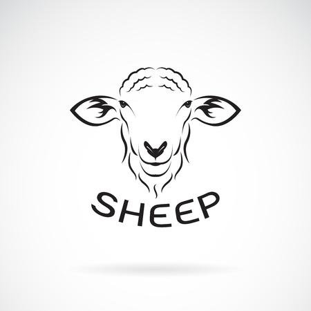 Vettore di disegno testa di pecora su sfondo bianco. Animali selvaggi. Facile illustrazione vettoriale modificabile a strati.