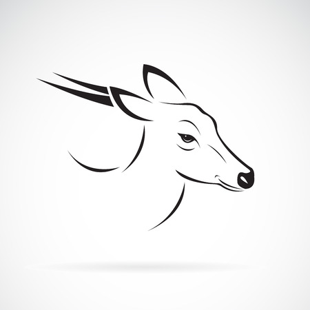 Vector of Barking deer or Muntjac (Muntiacini) on white background. Wild Animals. Easy editable layered vector illustration.