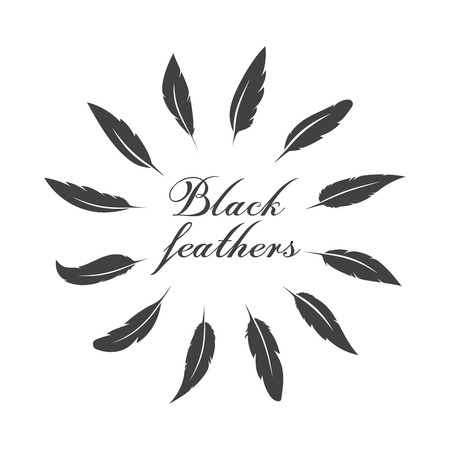 Vector group of black feather on white background. Easy editable layered vector illustration.