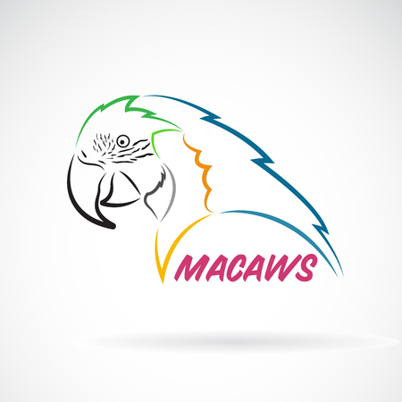 Vector of macaws parrot on white background. Bird Icon. Wild Animals. Easy editable layered vector illustration.
