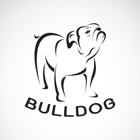Vector of bull dog design on white background. Pet. Animal. Easy editable layered vector illustration.