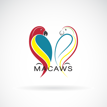 Vector of a parrot design on white background. Bird Icon. Macaws. Wild Animals. Easy editable layered vector illustration.