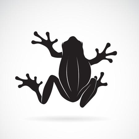 Conception de grenouille sur blanc