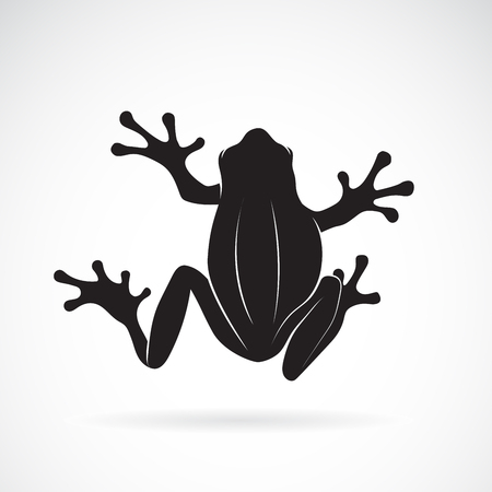 Frog design on white