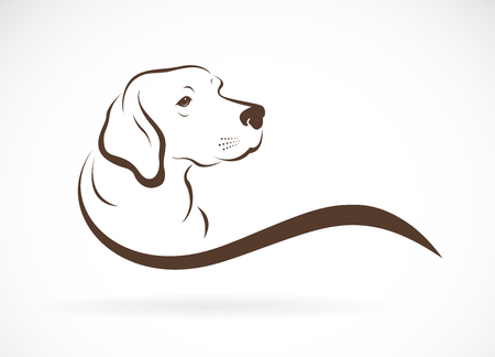 Vector of dog head(labrador) on white Illustration
