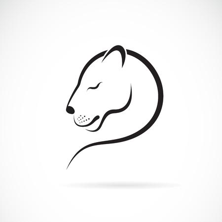 Vector de diseño de león femenino sobre fondo blanco. Animales salvajes. Logotipo o icono de león femenino. Fácil ilustración vectorial editable en capas.
