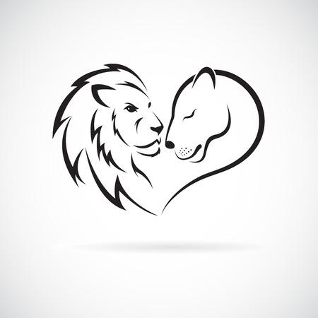 Diseño de león macho y león femenino sobre fondo blanco. Animales salvajes. Logotipo o icono de León. Ilustración vectorial en capas fácil de editar. Logos