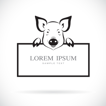 Vector of pig head with frame space for your text.  Farm Animal. Easy editable layered vector illustration. Çizim
