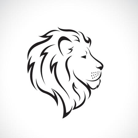 Male lion head design on a white