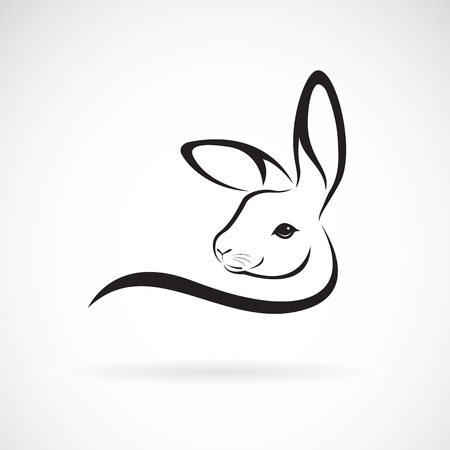 Rabbit head design on white