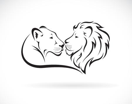 Disegno di leone maschio e leone femmina su bianco Vettoriali