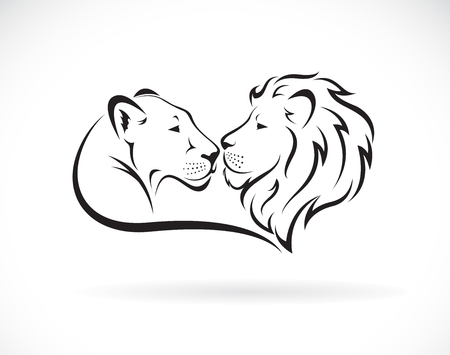Male lion and female lion design on white