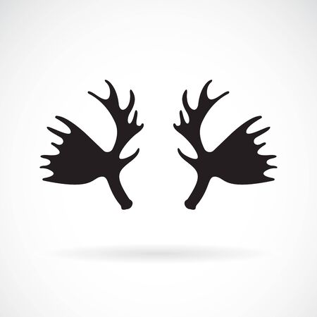 Vector of antler mousse on a white