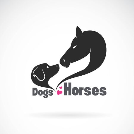 Vector of dog and horse head on white Illustration